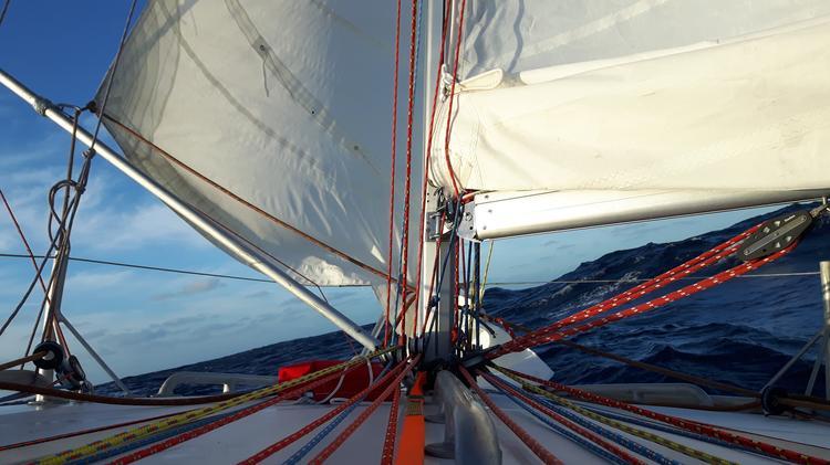 Atom w regatach Setką przez Atalantyk